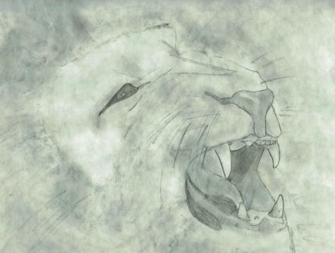 Lion 1 by Tori Washburn