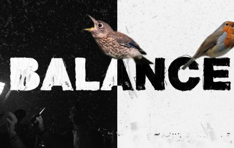 "Everyone Needs ""Balance"""