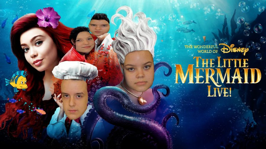 Live from Under the Sea